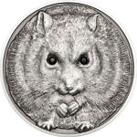 Campbell Coins and Collectibles