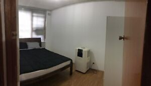 Ashfield room available $220