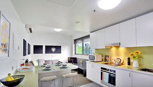 Room Available in Southbank Student Accommodation South Brisbane Brisbane South West Preview