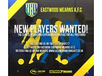 Well organised Sunday 11's team looking for players.