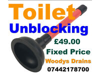 Emergency Toilet Unblocking £49 Fixed Price. Night & Day - Norwich & All NR Post Codes