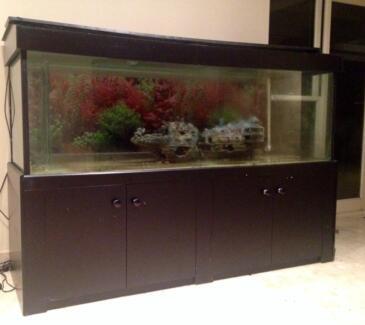 6ft x 2ft x 2ft aquarium glass fish tank mordern style cab for 6ft fish tank