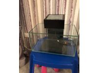 Fluval all enclosed glass fish tank