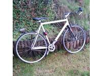 Single speed bike fixie