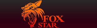 Foxstar AU