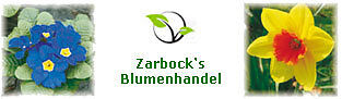 Zarbock's Blumenhandel
