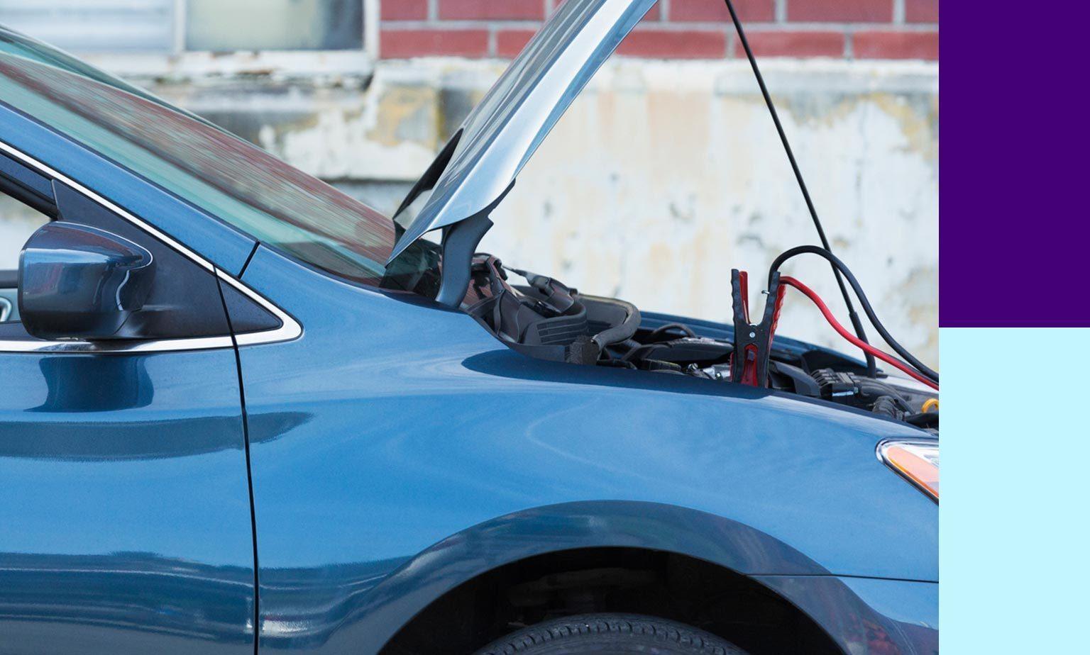 Bis zu -50% auf Autoelektrik