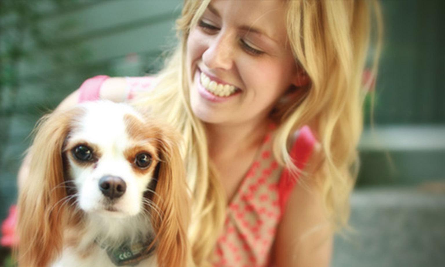 save up to 10% off PetSafe