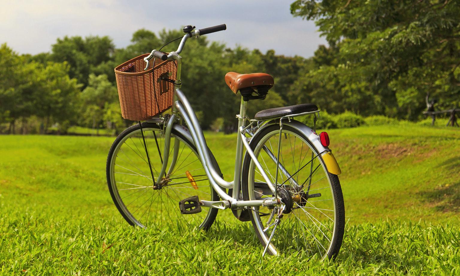 Vom Beach-Cruiser bis zum Trekking-Bike