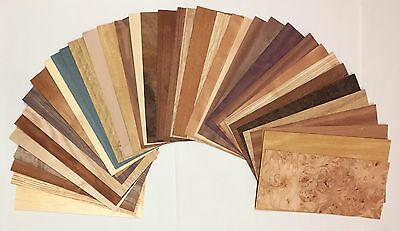 Wood Veneer Domestic Exotic Veneer Variety Pack 20 Sq. Ft. Unbacked