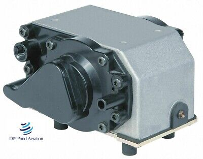 New Thomas Dry Running Diaphragm Compressorvacuum Pump Model 150109 6025se 24v