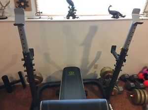 Gold's Gym XRS 20 Bench Press and Squat Rack