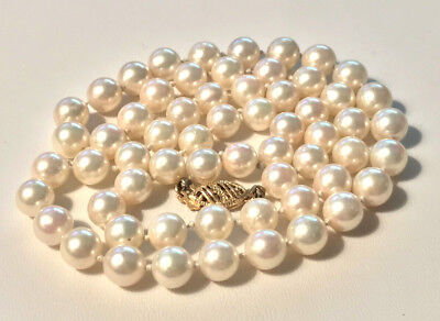 Ivory Rose AKOYA Pearls 6.5-7.0 Mm 61 Pearls Long 14K Yellow Clasp  - $135.00