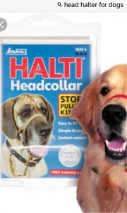 Halti Head Collar - for small dogs