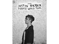 JUSTIN BIEBER PURPOSE TOUR LONDON 12th October