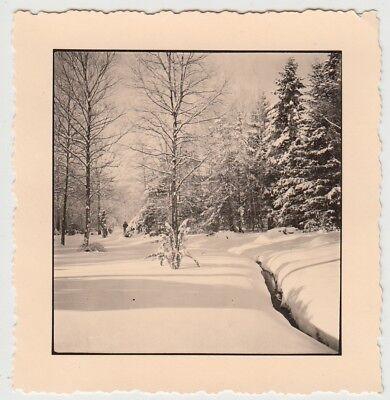 (F29048) Orig. Foto Riesweiler im Hunsrück im Winter 1940