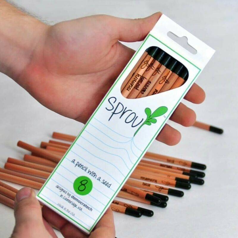 Sprout Plantable Graphite Pencils with seeds in eco-friendly wood | 8 Pack |Gif