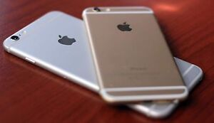 WANTED 6 PLUS