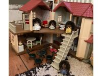 Beechwood hall and hedge hog family with outdoor set