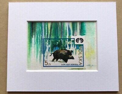 boar art, framed original art, Polish Postage Stamp, Aceo original, Wild Boar,