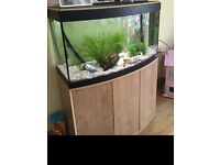 Fish tank and cabinet. Complete set up, pump less than a year old, plus heater etc