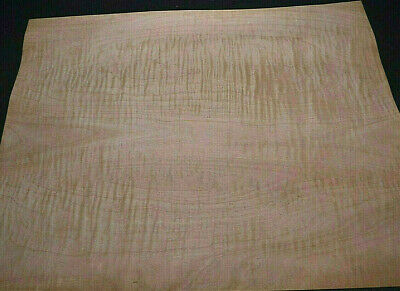Curly Maple Raw Wood Veneer Sheets 15 X 19 Inches 142nd   4539-49