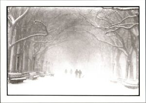 FOTO-PHOTO-BRUCE-DAVIDSON-CENTRAL-PARK-IN-INVERNO-NEW-YORK-1992