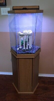 30 Gallon Hexagonal Fish Tank By Oceanic~Wood Stand, Cover, Light, Accessories