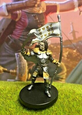 Lastwall Paladin D&D Miniature Dungeons Dragons pathfinder human fighter -