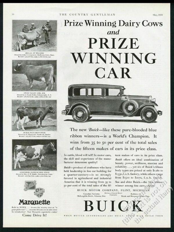 1930 Brown Swiss cow photo Buick sedan car vintage print ad