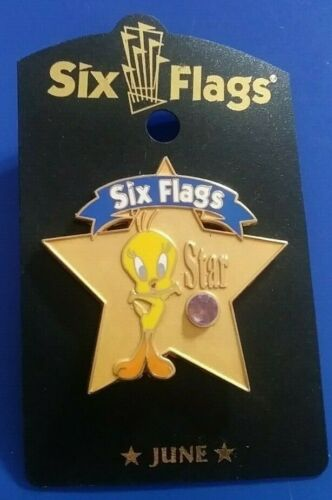 SIX FLAGS WARNER BROS TWEETY BIRD STAR BIRTHSTONE MAY COLLECTIBLE PIN RARE