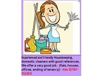 Housekeeping and Domestic Cleaner £10,00 per hour