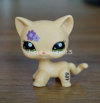 Rare Hasbro Littlest Pet Shop LPS Purple flower Kitty Cat Green Eyes Toys #1962