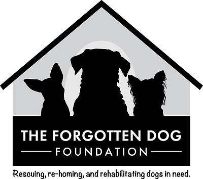 THE FORGOTTEN DOG FOUNDATION