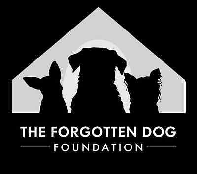 THE FORGOTTEN DOG FOUNDATION
