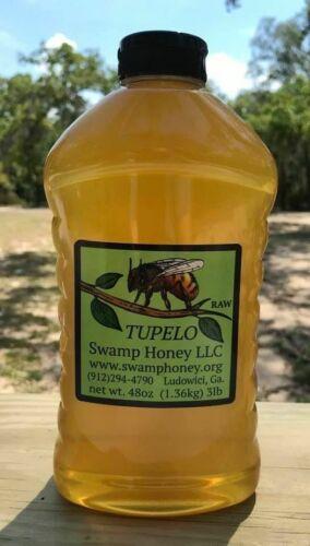 3lb Raw Georgia Tupelo Honey 2021 Crop Priority Shipping Included