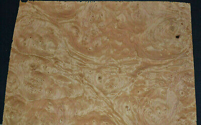 Chestnut Burl Raw Wood Veneer Sheets 10 X 15 Inches 142nd Thick  E7318-39