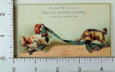 Frank W Tower Practical Sanitary Plumber Adorable Dogs Tug-Of-War Scarf F68