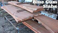 Raw Blue Gum Timber Slabs for Sale Pine Mountain Ipswich City Preview