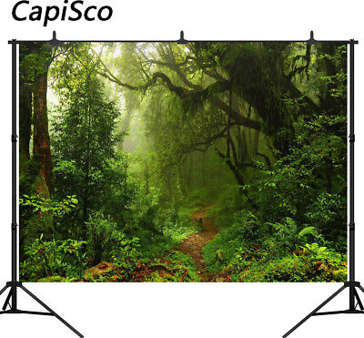 Jungle Trees Backdrop (Vinyl Jungle Backdrop Tree Wonderland Path Rainforest Photography Backgrounds)