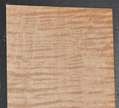 Curly Maple Raw Wood Veneer Sheets 5 X 35 Inches 142nd 7717-36