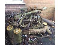 Timber Free
