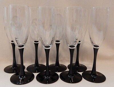 (Set 8 Black Stem Wine Champagne Flutes Glass Crystal Goblet 8 1/8