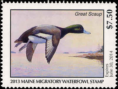 MAINE  30  2013 STATE DUCK STAMP  GREATER SCAUP  BY RICHARD ALLEY
