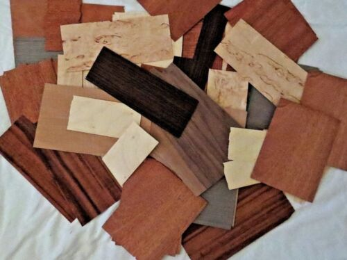 Small pieces Mix Exotic and Common Wood Veneer  ART Pack
