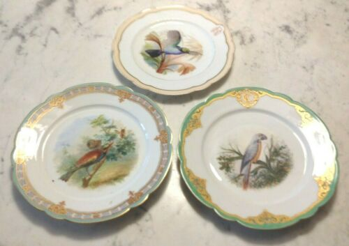Three Antique 19th C. French Porcelain Bird Plates