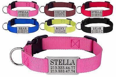 - Dog Collar Nylon Optional Personalized Engraved Nameplate S M L Pink Red Blue