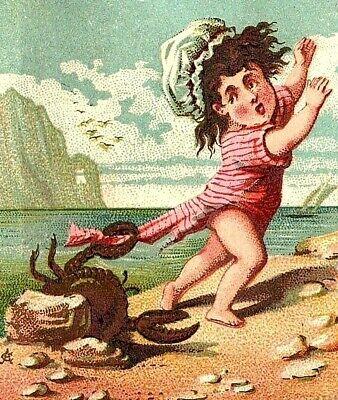 1880's-90's City News Depot School Supplies Beach Girls Crab Pinching P146 - 90s School Supplies