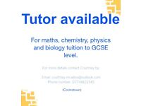 Maths, Chemistry, Biology and Physics Tuition up to GCSE level and help getting into medical school