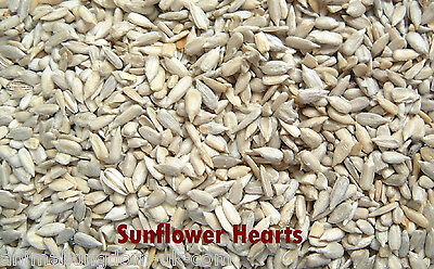 Sunflower Hearts/Kernels for Wild Birds 12.5kg